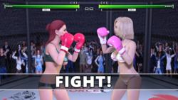 Boxing Fantasy screenshot 4