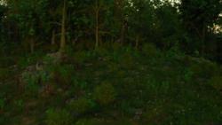 LibDreams screenshot 2