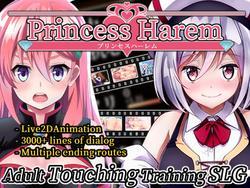Princess Harem screenshot 4