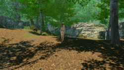 Paradise Trails screenshot 13