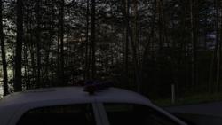 Secrets of Whispering Pines screenshot 0