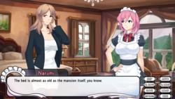 Maid Mansion screenshot 4