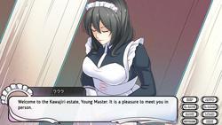 Maid Mansion screenshot 0