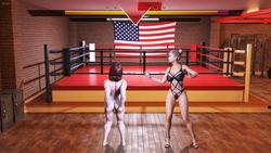 Ultimate Fighters 3 : New Era screenshot 5